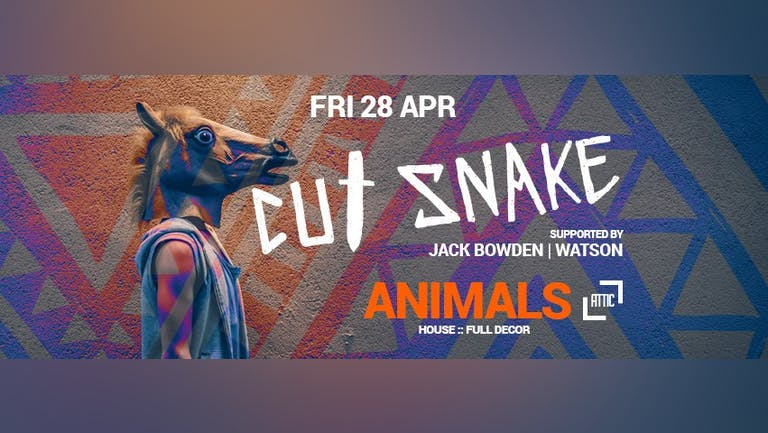 CUT SNAKE: Animals Party CANCELLED
