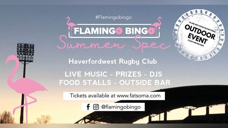 Flamingo Bingo Haverfordwest Summer Spec!