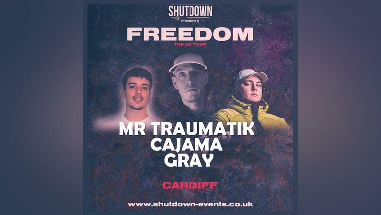Shutdown - Freedom Tour - Cardiff