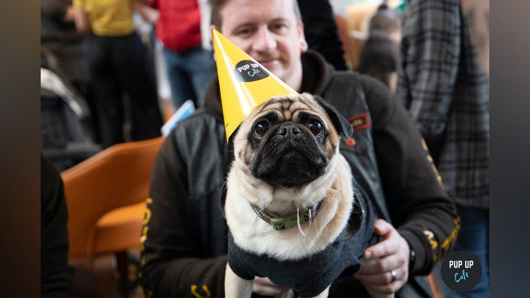 Pug Pup Up Cafe - Southampton