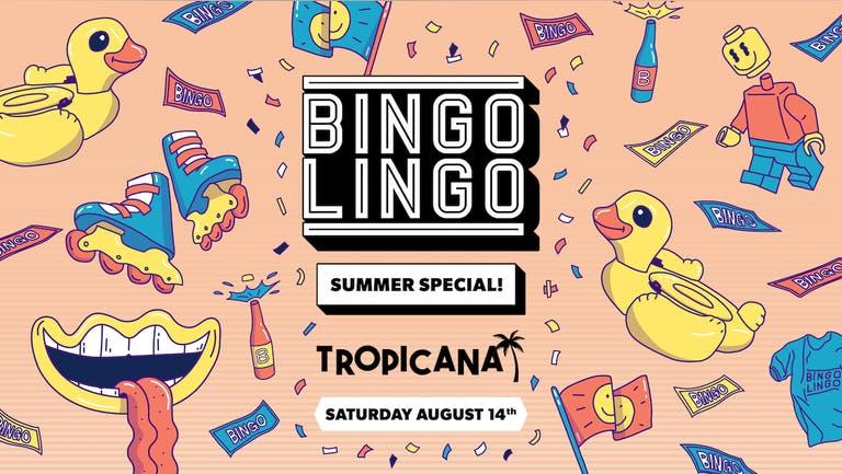 BINGO LINGO - Weston-super-Mare - Summer Special!