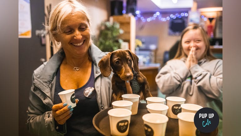 Dachshund Pup Up Cafe - Liverpool